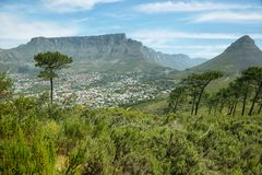 Table Mountain from signal hill Royalty Free Stock Photos