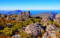 Table Mountain (South Africa) Stock Images