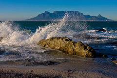 Table Mountain Sunrize. Sunrize over Table Mountain with crocodile looking rock in foreground and ocean spray Stock Image
