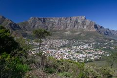 Table Mountain under a blue sky. Stock Images