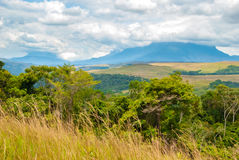 Table Mountains in Gran Sabana, Venezuela. Kukenan and Roraima Table Mountain on the horizon of Great Savanna, Canaima National Park, Venezuela Stock Photos