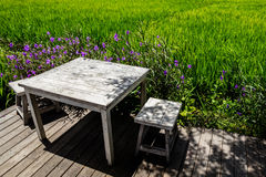Table at an open area cafe on the edge of a rice field, Umalas, Bali Island, Indonesia Stock Photos