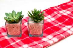 Table ornaments. Two table ornaments on a red checkered table cloth Royalty Free Stock Photos
