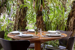 Table. Outdoor restaurant table with vegetation around Stock Photography