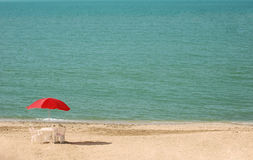 Table with parasols at the  summer beach. Table with parasols at the summer beach Stock Photos
