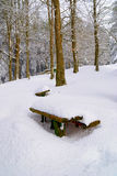 Table in the park Stock Photography