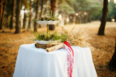 Table in the pine forest Royalty Free Stock Photography