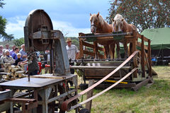 Table saw powered by horses Stock Photography