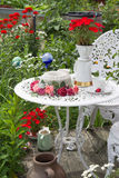Table set in garden with flowers all around Stock Photography