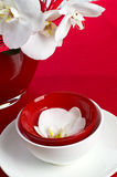 Table set with red orchid flowers Royalty Free Stock Images