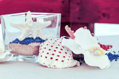 Table set by the sea with starfish and shells Stock Photography