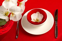 Table setting with orchid flowers. Table setting with white orchid flowers on red tablecloth stock images
