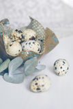Table setting with quail eggs on decorative plate, green twig, linen napkin. Table setting with decorative plate, green twig, linen napkin and quail eggs Stock Images