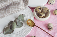 Table setting with quail eggs on a white plate, linen napkin, green twig. Table setting with white plate, linen napkin, golden spoon, green twig and quail eggs Royalty Free Stock Image