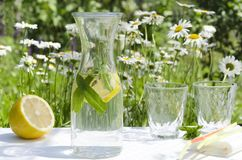 Table setting for summer picnic in the garden.Bottle of healthy beverage with lemon and mint, glasses, napkin and straws against f stock image