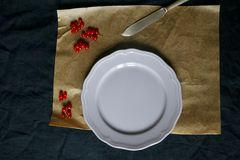 Table Setting. With navy tablecloth, parchment paper, one lilac plate, antique knife and red currants. Top view, copy space stock photos