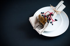 Table setting with wild grapes Royalty Free Stock Photo