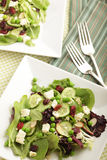 Table Setting With Salads Stock Image