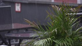 Table in a street cafe in the rain stock video footage