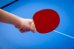 Table tennis Stock Images
