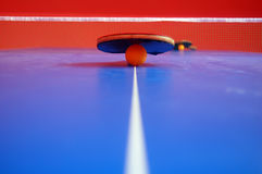 Table tennis royalty free stock photos