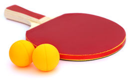 Table tennis ball with bat Royalty Free Stock Photos
