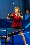 Table tennis competition among girls Royalty Free Stock Images