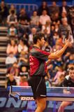 Table tennis competitions Stock Image