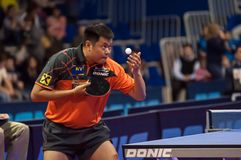 Table tennis competitions Royalty Free Stock Photos
