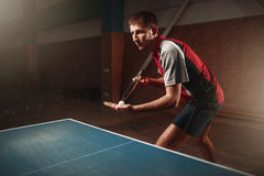Table tennis, male player with racket and ball. Ping pong training indoor stock images