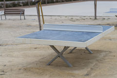 Table tennis. Stock Photography