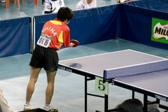 Table tennis player Royalty Free Stock Image