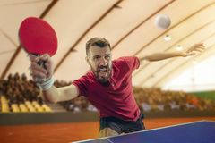 The table tennis player serving. The table tennis player in motion. Fit young sports man tennis-player in play on sport arena background. Movement, sport game Royalty Free Stock Photos