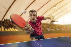 The table tennis player serving. The table tennis player in motion. Fit young sports man tennis-player in play on sport arena background. Movement, sport game Royalty Free Stock Photography
