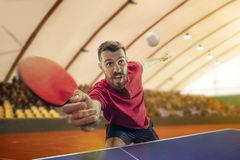 The table tennis player serving. The table tennis player in motion. Fit young sports man tennis-player in play on sport arena background. Movement, sport game Stock Photo