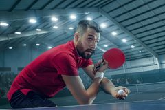 The table tennis player serving. The table tennis player in motion. Fit young sports man tennis-player in play on sport arena background with lights. Movement Royalty Free Stock Image