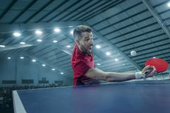 The table tennis player serving. The table tennis player in motion. Fit young sports man tennis-player in play on sport arena background with lights. Movement Stock Image