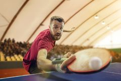 The table tennis player serving. The table tennis player in motion. Fit young sports man tennis-player in play on sport arena background. Movement, sport game Royalty Free Stock Image