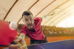 The table tennis player serving. The table tennis player in motion. Fit young sports man tennis-player in play on sport arena background. Movement, sport game Stock Image