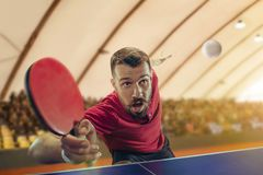 The table tennis player serving. The table tennis player in motion. Fit young sports man tennis-player in play on sport arena background. Movement, sport game Stock Photography