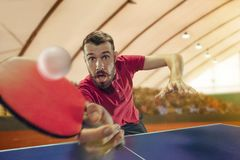 The table tennis player serving. The table tennis player in motion. Fit young sports man tennis-player in play on sport arena background. Movement, sport game Stock Photos