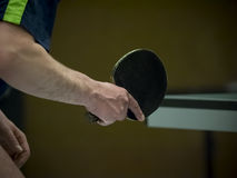 Table tennis player waiting for the ball Royalty Free Stock Photo