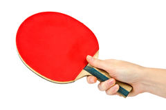 Table tennis racket on the hand Royalty Free Stock Photo