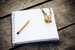 On the table there is a notebook, a pencil and yellow flowers coltsfoot royalty free stock photo