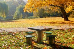 Table to play chess in autumn park Royalty Free Stock Image
