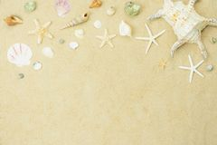 Table top view aerial image of summer & travel beach holiday in the season background concept. Flat lay variety shell on white sand.Free space for creative stock photo