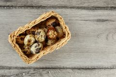 Table top view of quail eggs placed in small rectangular basket. Table top view of quail eggs placed in small rectangular basket Stock Photos