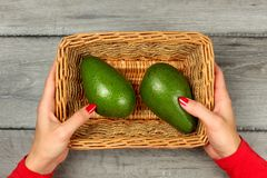 Table top view - young woman hands, red clothing and nails, holding square basket with two avocado, on gray wood desk. Table top view - young woman hands, red Royalty Free Stock Images