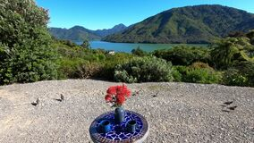Outdoor table with a view on Pelorus Sound, Marlborough Sounds, South Island, New Zealand, Oceania.