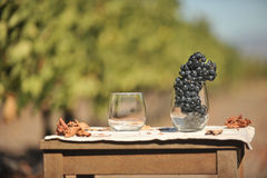 Table with two wine glasses in field Stock Photography